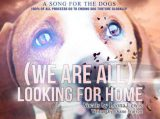 دانلود آهنگ Leona Lewis We (Are) All Looking for Home