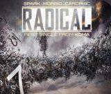 دانلود اهنگ رادیکال از اسپارک و موربید و کاروفیک