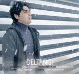 http://japanmusic.ir/wp-content/uploads/2016/12/deltangi.jpg