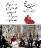 دانلود موزیک ویدئو تصنیف دل شیدا از یاسر جان بخشی