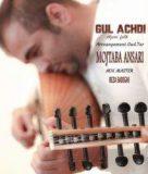 دانلود آهنگ gul achdi از مجتبی انصاری